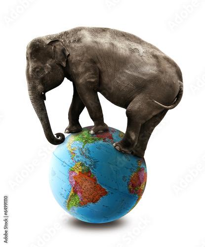 elephant balancing on globe photo libre de droits sur la banque d 39 images image. Black Bedroom Furniture Sets. Home Design Ideas