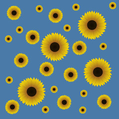 Seamless pattern. Sunflowers of different sizes