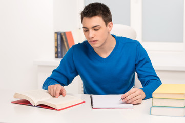young attractive student studying lessons.