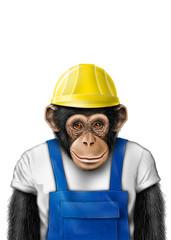 smartmonkey worker isolated