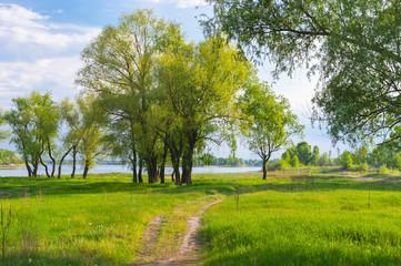 Riverside of Dnepr river, Ukraine