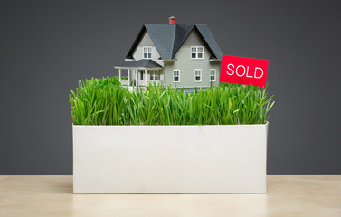 Close up of house model with green grass and sold tablet