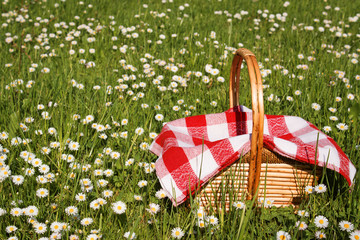 Foto op Canvas Picknick picnic basket