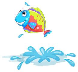A colourful fish