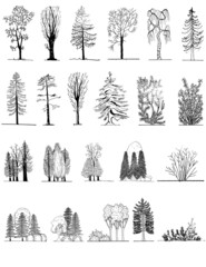 A set of tree silhouettes , for architectural  design