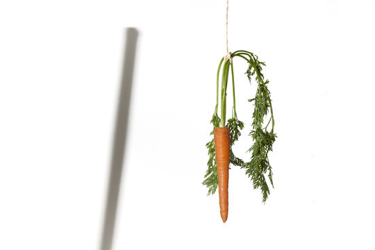 Double motivation with carrot and stick