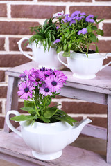 Flowers in  decorative pots