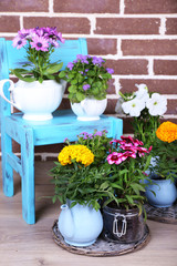 Flowers in  decorative pots on chair, on bricks background