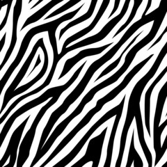 Zebra pattern as a background, vector