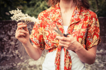 Young woman with elderflowers and scissors