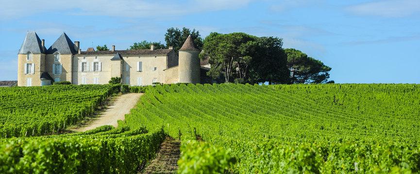 Vineyard and Chateau d'Yquem, Sauternes Region, Aquitaine, Franc