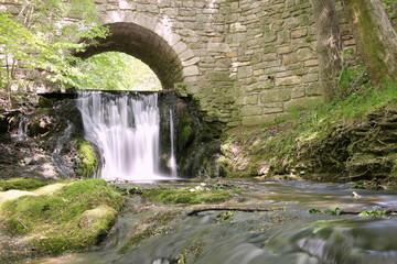 Wasserfall der Lutter bei Großbartloff (Eichsfeld, Thüringen)