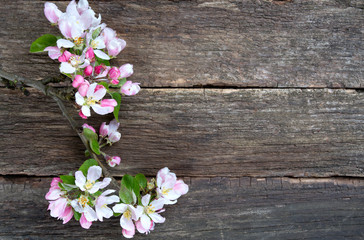 apple blossoms on wooden surface