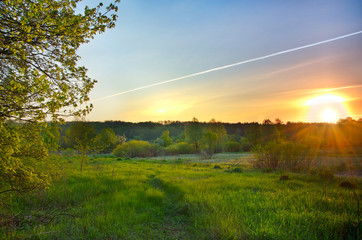 Landscape with the sunrise over the meadow and lines from the ai