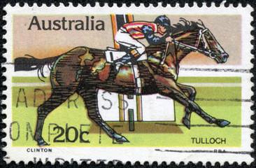 Tulloch, Race Horse, Australian Horse Racing