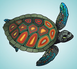 Colored turtle swims on blue background