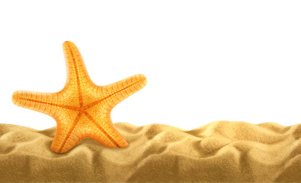 Summer background, starfish in the sand
