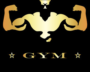design for gym and fitness