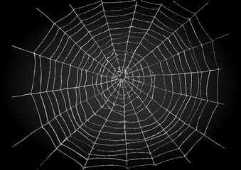 Illustration of spiderweb