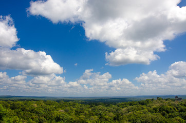 Wall Mural - Blick von Tikal Ruine über Regenwald