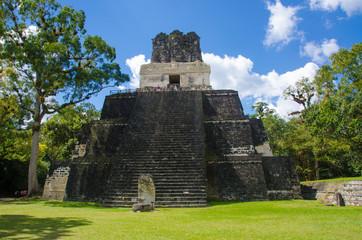 Wall Mural - Tikal Maya Ruinen in Guatemala