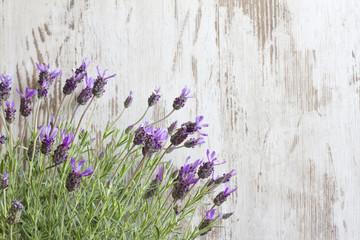 Lavender flowers on vintage wooden boards background
