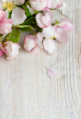 apple blossoms on white wooden surface