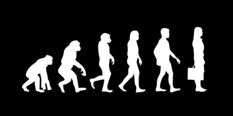 Vom Affen zum (Menschen) Business Frau