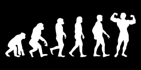 Vom Affen zum (Menschen) Bodybuilder