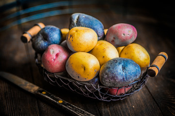 Red,blue and yellow potatoes on wooden background