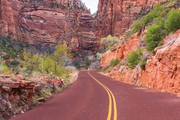 Wall Mural - Scenic Zion Road
