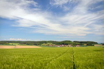 Fotoväggar - Blick über Feld