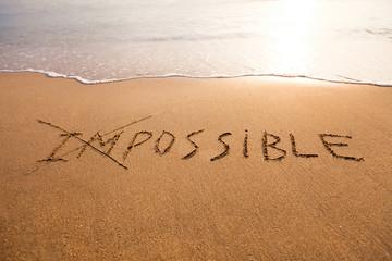 possibility concept