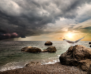 Fototapete - Thunderstorm over sea