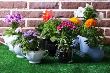 Flowers in  decorative pots on green grass, on bricks