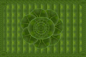 Wall paper concept.( Create form green leaf )