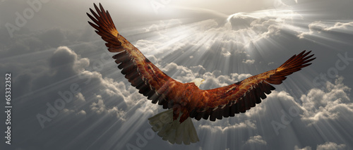 Wall mural Eagle in flight above the clouds