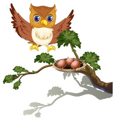 An owl watching the eggs at the branch of a tree