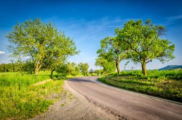 Droga w Czechach