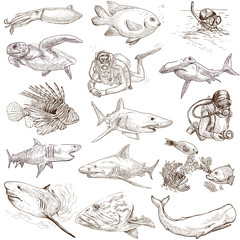 Underwater 1 - hand drawings