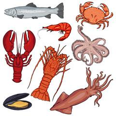 Vector Set of Cartoon Sea Food