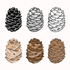 Vector set of pine cones on a white background