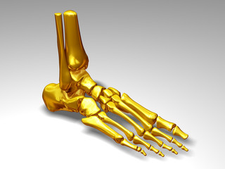 Foot skeleton in gold