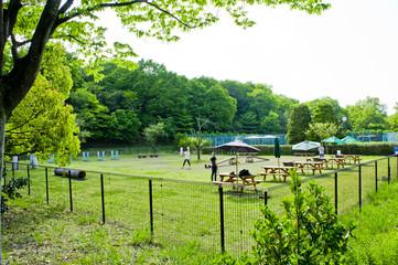 国営武蔵丘陵森林公園 ドッグラン 小型犬用