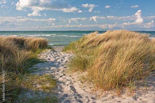 Fototapete Dünen am Strand der Ostsee bei Heiligenhafen, Schleswig-Holstein