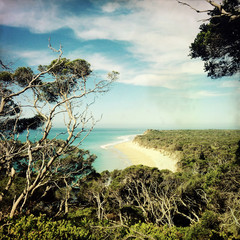 Beach view at Portsea Reserve, Australia