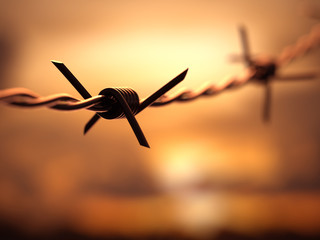 Barbed wire with Depth Of Field