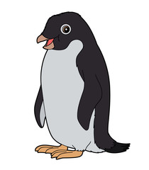 Cartoon animal - penguin - flat coloring style