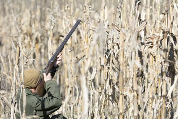 Camouflaged , hidden hunter in field of corn hunting partidges