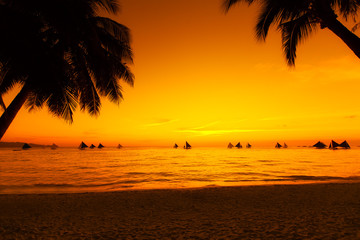 Sailboats at sunset on a tropical sea. Palms on the beach. Silho